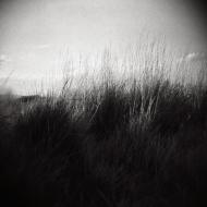 Photograph by Neva Knott