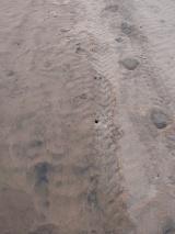 Zihuatanejo beach