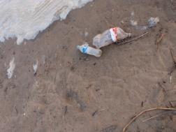 Trash at shoreline