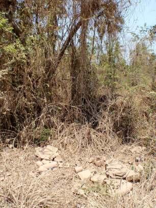 Roadside trash Zihuatanejo